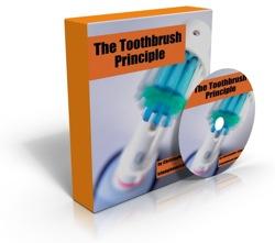 Toothbrush Principle 3D cover.jpg